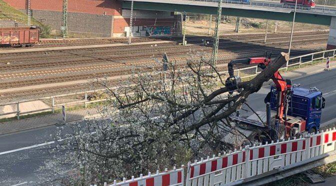 """""""Aufwertung"""" der B236 nach Finnentroper Art"""